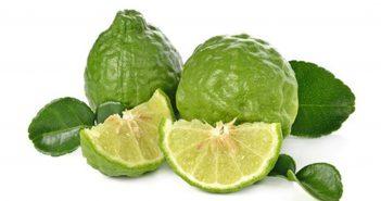 Makrut Lime