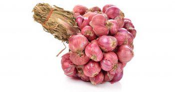 Thai red shallots