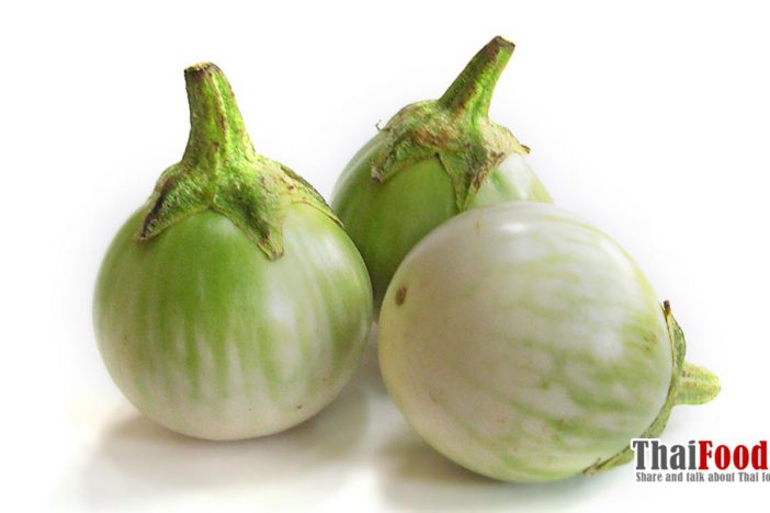 Thai round eggplant